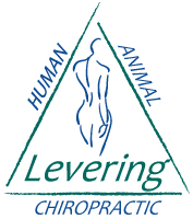 Levering Chiropractic Logo